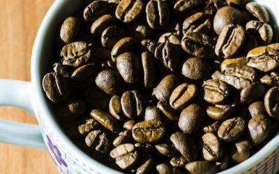 L' OSSESSIONE per il fatturato ti condurrà al FALLIMENTO (il caso Arnold Cafè)?