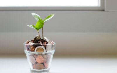 Valutazioni per il 2020 e Budget 2021